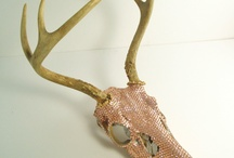 antler project