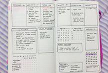 Organização/planos