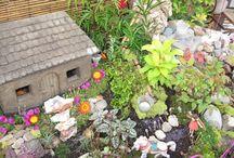 Fairy Garden / by Julie Haehnle