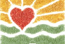 Creative Rice Images