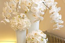 Centerpiece Orchids