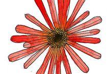 FLOWER/flora DESIGN / by Kate Falk
