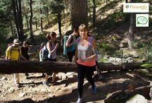 CAMINO SCHMIDT. EXCURSION ACADEMIA PARANINFO. / Excursion por el camino SCHMIDT. Octubre de 2015.