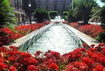 Murcia, ¡qué hermosa eres!