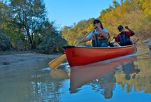 Mississippi Paddling Trails / Canoeing, kayaking, and paddling trails in the Lower Delta of the Mississippi River