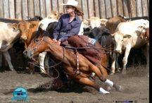 american  horse rider