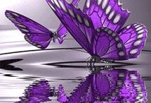 The Color Purple...my Favorite... / by Cynthia Ryder