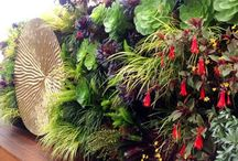 Florafelt Vertical Gardens / Vertical Gardens and Living Walls designed with Florafelt.