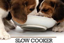 Dog food recipes.