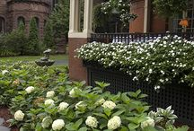 St Peter Garden Ideas