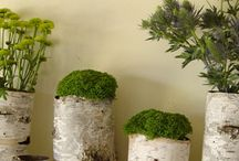 Garden Decor for Home