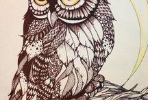 Owl sowy