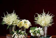 Winter Wonderland / Winter Weddings