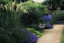 Space: Garden & Outdoor