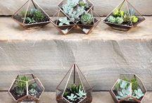 greats garden ideas !!!