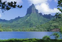 Polynesia Dreamin' / Polynesia Dreamin'