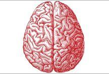 HELP YOUR BRAIN – A Few Ideas To Keep Your Brain Sharp