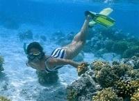 El Gouna, Diving