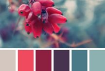 Colors & Palettes / Color inspiration for print, web, design, home and more / by Keiko Zoll