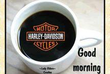 Good night Harley Davidson