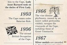 The Dutch at the Cape