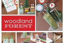 Woodland Forest Owl Birthday Party Ideas