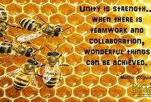 Cox's Honey Quotes of the Week / Inspirational and humorous quotes from Cox's Honey.