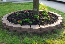Landscaping and Outdoors / by Terrie Havard
