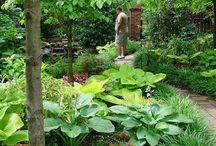Piękno ogrodu