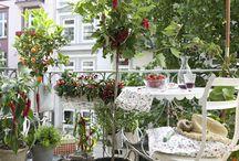 Balkon ❤