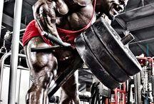 Training/Nutrition/Information/Motivation Articles