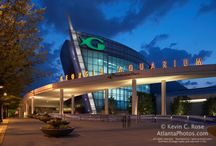 Atlanta Attractions