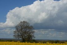 English Landscape / Photographs of English landscapes with particular interest in seasonal variations and cloudscapes.