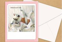 Grußkarten - Geschenkkarten