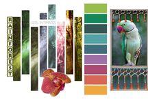 colours ....