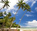 Travel Centre - Smugglers Cove / Island Connection (Smugglers Cove) provides a guide to a variety of accommodations and activities throughout the Fiji Islands for backpackers and independent travellers.