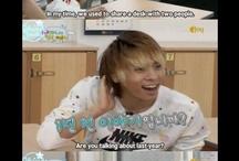 Shinee's meme