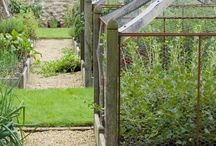 Kitchen Garden / A collection of kitchen garden ideas and tips
