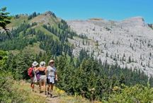 Mt. Shasta: Hikes / Local hiking trails offer spectacular scenery and, occasionally, a glimpses of deer, eagles, black bear and other wild animals.