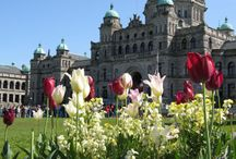 Victoria BC / by Honey Brown