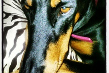 My beautiful Dobie girlz! / Just some random pics of our sweet Dobermans Tia and Ellie.