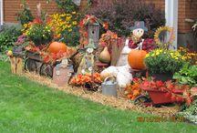 My Autumn Display 2014 / Happy Harvest Everyone