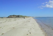 Chatham Beaches / Chatham covers only 17 square miles however has over 66 miles of shoreline!  Chatham borders the Atlantic Ocean to the east, Nantucket Sound to the south and has many bays, harbors, inlets, estuaries, rivers, ponds and lakes just waiting to be explored!