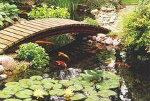 Yard Works - Raised Gardens & Ponds / by Cheryl Mouncey
