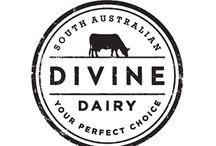 cow design logos