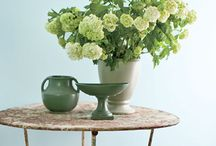 Paint trends for 2014 / by Deborah Mansell Designs