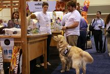 Global Pet Expo 2015 | Animals on the Show Floor / Photos of the pets that wandered the 2015 Show Floor.