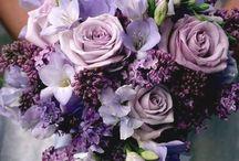 minden ami lila