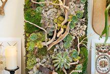 jardin vegetal