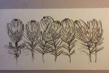 Protea...
